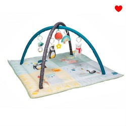 Babygym & Speelkleed TafToys | Noordpool